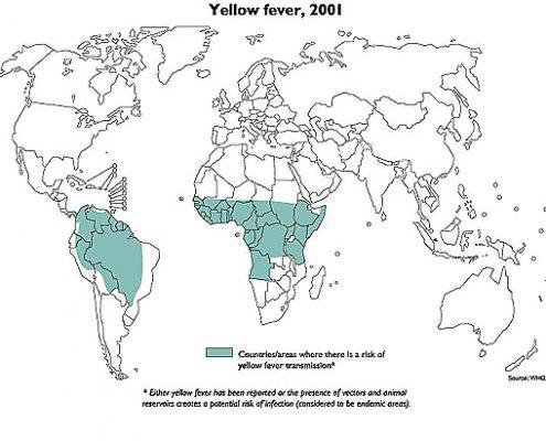 Gelbfieber