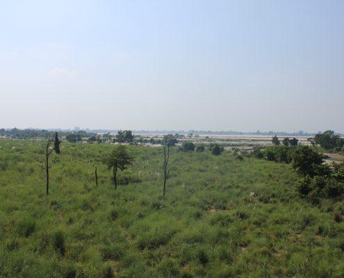 westliches Terai